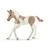 Książka ePub Koń paint horse foal SLH13886 - brak
